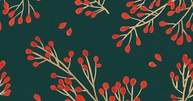 Jarmark Bożonarodzeniowy w Ogrodzie Botanicznym