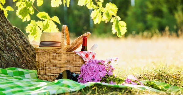 Rodzinny piknik na Vispen