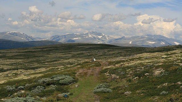 Krajobraz Dovrefjell