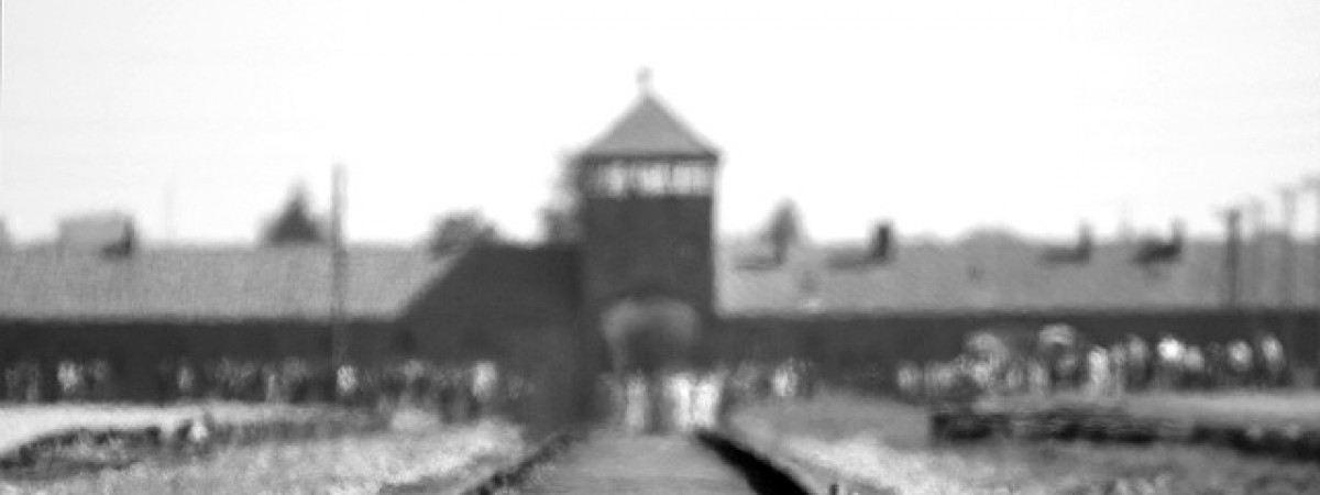 """Polacy mogą tropić zwrot """"polski obóz"""" w sieci. Pomoże aplikacja Muzeum w Auschwitz"""