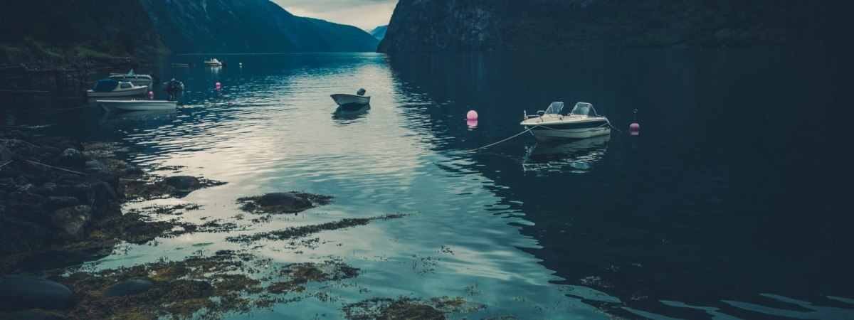 Rzadki przypadek zarażenia pochodną cholery w Oslofjorden. Chorej Norweżce amputowano nogę