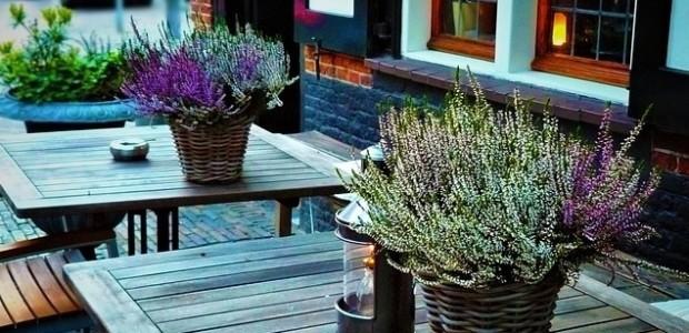 Najlepsze letnie restauracje w Oslo