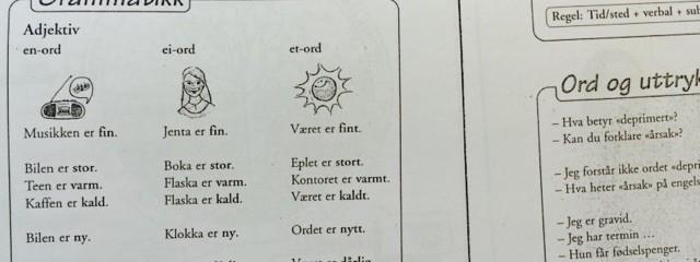 Książki do nauki norweskiego