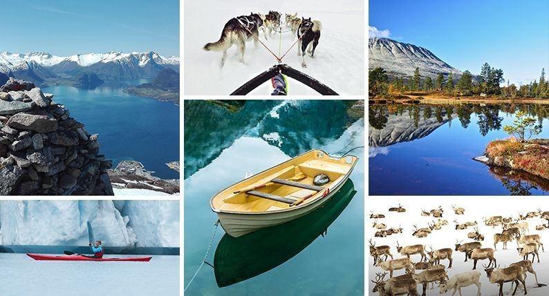 Lubisz robić zdjęcia? Wyślij je nam! Najpiękniejsze fotografie trafią do polsko-norweskiego kalendarza 2019
