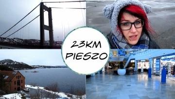 #4 NORVLOG: WYCIECZKA DO Sørlandssenteret