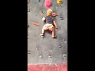 19 months  Rock Climbing Toddler