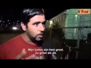"""Muslim Migrants Demand Sex: """"Problem, problem problem here (points to groin) Balls is very big"""""""