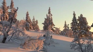 Winter scenery - Norway, Nissedal (HD - 1080p)