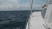 Sailing the Caribbean Sea (Catana '50)