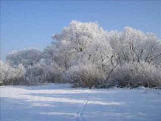 SDM Między nami tyle śniegu