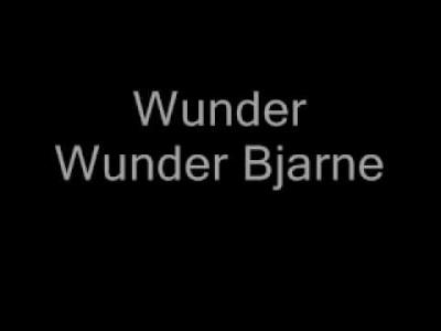 Plumbo - Wunder Bjarne [Tekst]