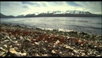 Falkenbach - Asaland (2011) [HD Music video]