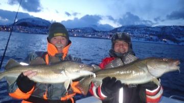 Cod and Halibut fishing at Skjervoy Norway