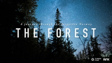 THE FOREST - A Journey Through the Forgotten Norway
