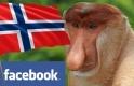 Co Was denerwuje w Norwegii vs komentarze Facebook