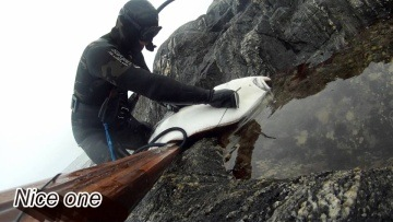 Spearfishing in Norway, Paltus Halibut