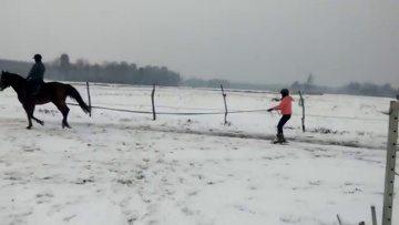 Skiring z Notą jazda na nartach za koniem