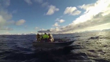 Sørøya Fun Tour 2014 - Skrei Fishing in Norway!