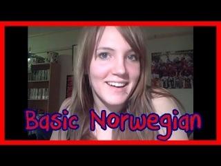 Norway - The Basic Language