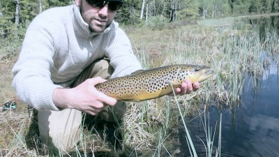 Fluefiske / fly fishing in Nordmarka, Oslo, Norway